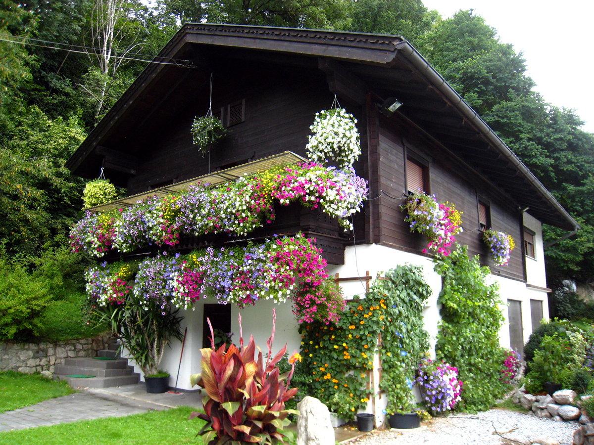 Балконное садоводство 24