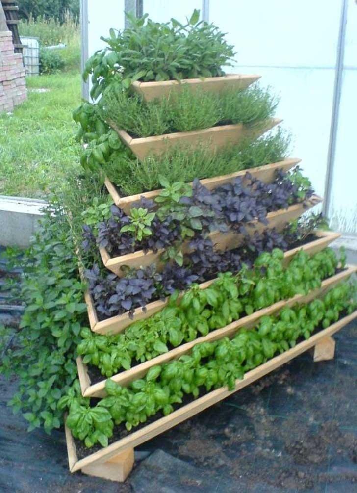 Выращивание зелени в коробах 73