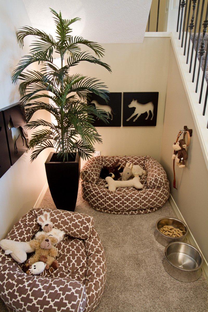 Интерьер для собак