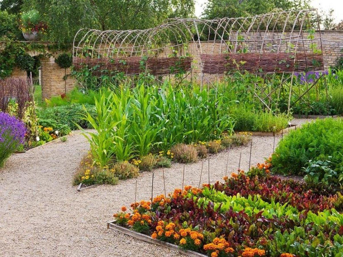 Как обустроить огород своими руками 6 соток