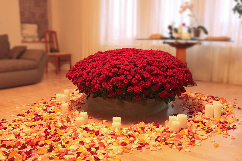 Миллион алых роз цветов