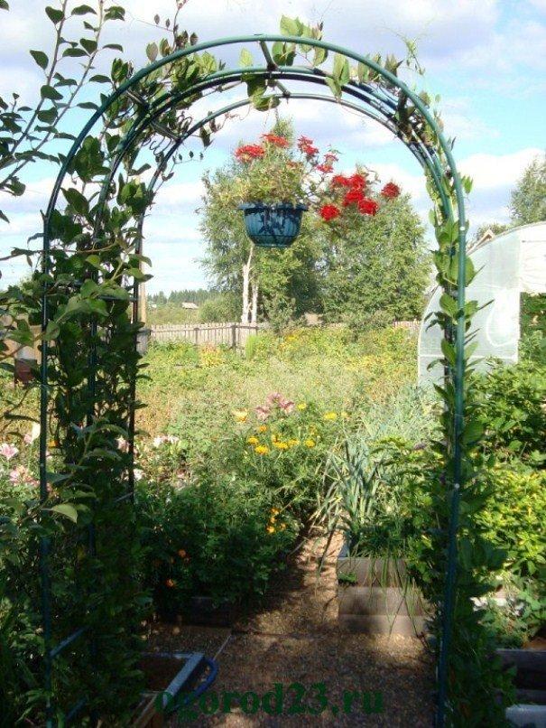 Цветочные арки своими руками фото 53