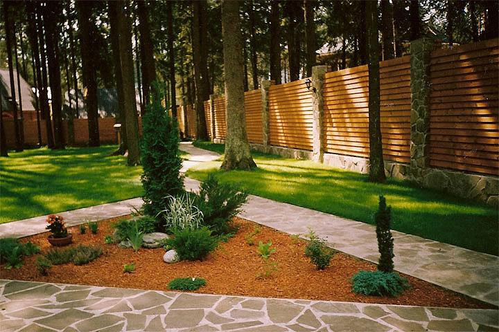 Дизайн участков с лесом