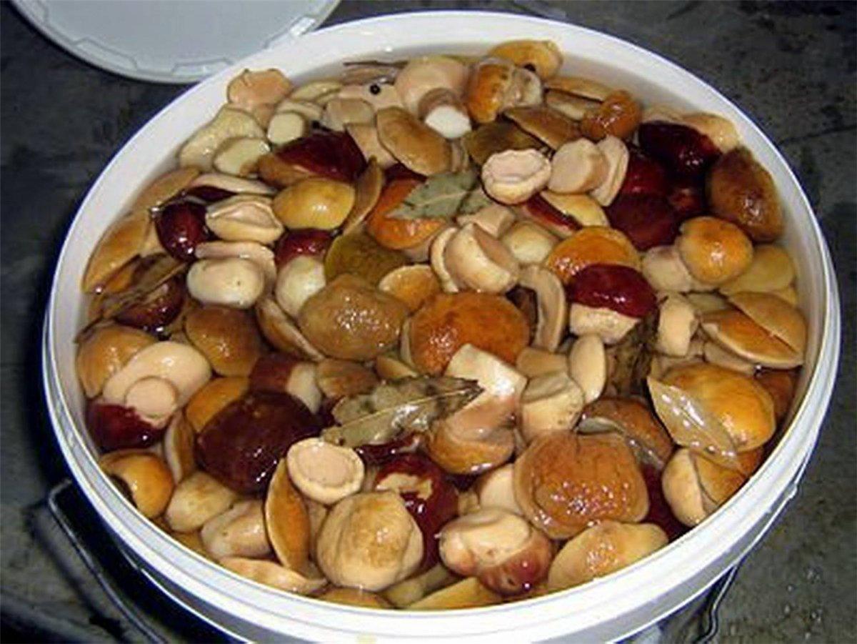 Как сделать замороженные грибы как маринованные