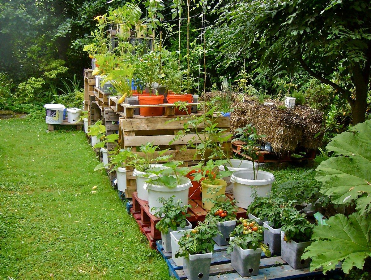 Оформление сада и огорода своими руками из подручных материалов фото