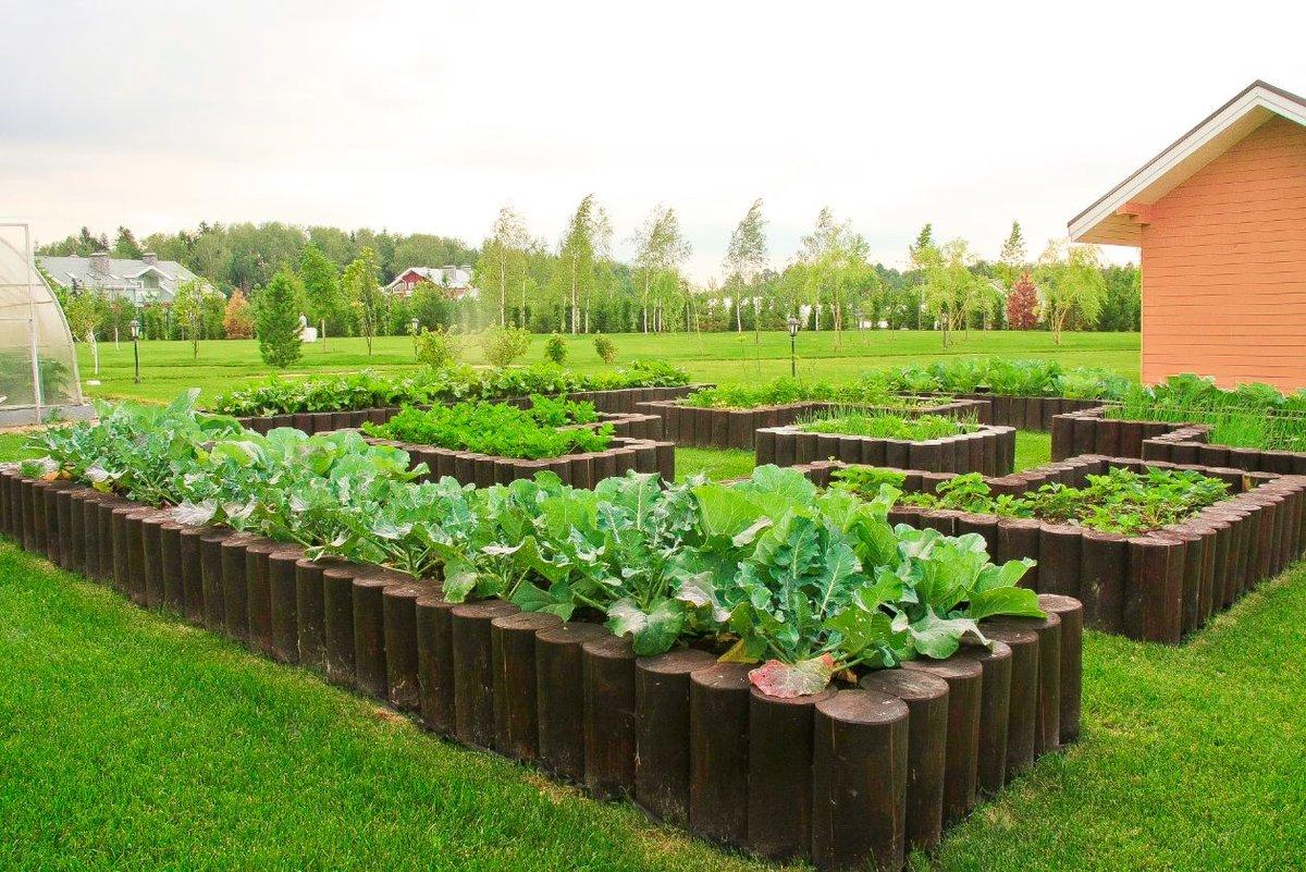 Легкий огород своими руками 31