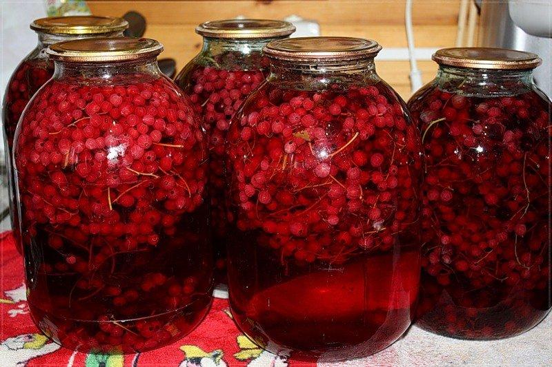 Как сделать вино из компота из смородины 460