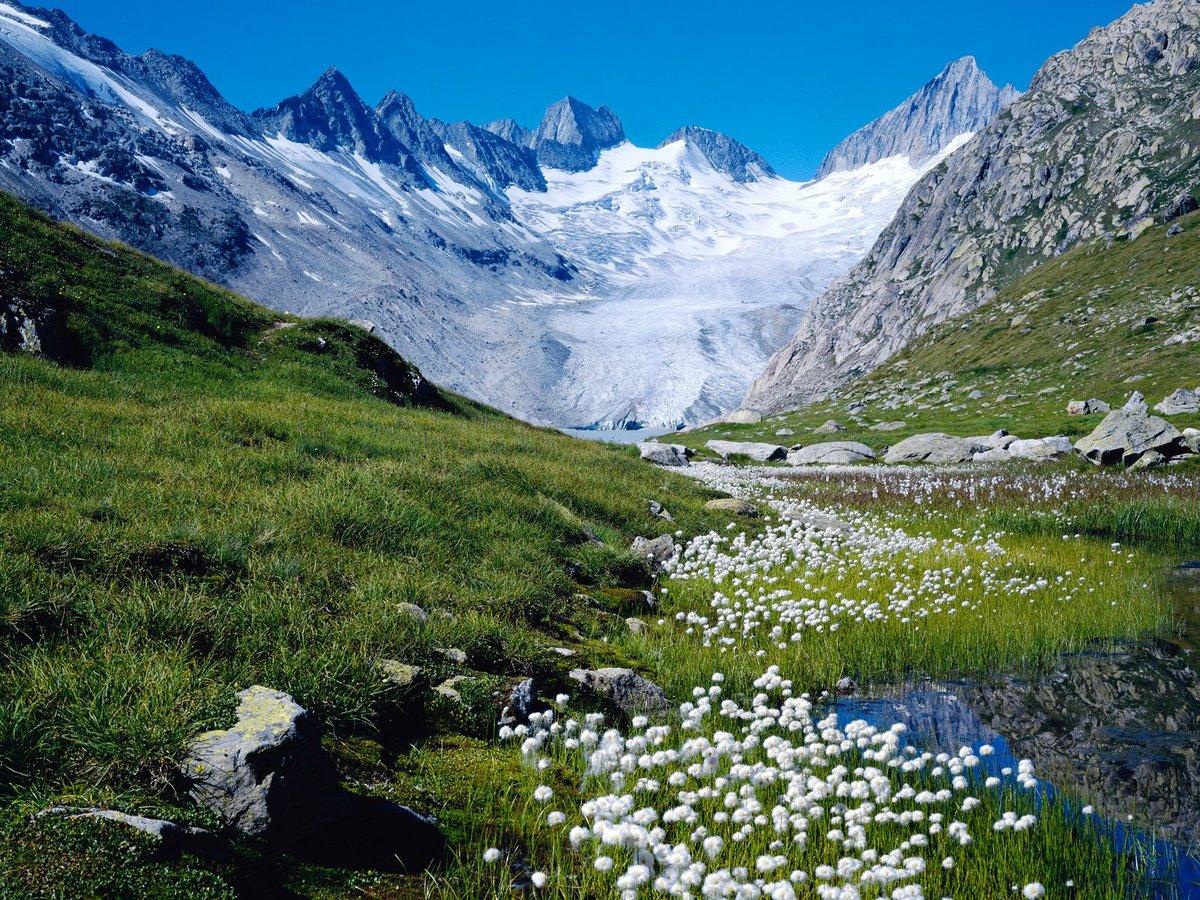 Piz Bernina, Moteratsch Glacier, Engadine, Switzerland  № 1473497 бесплатно