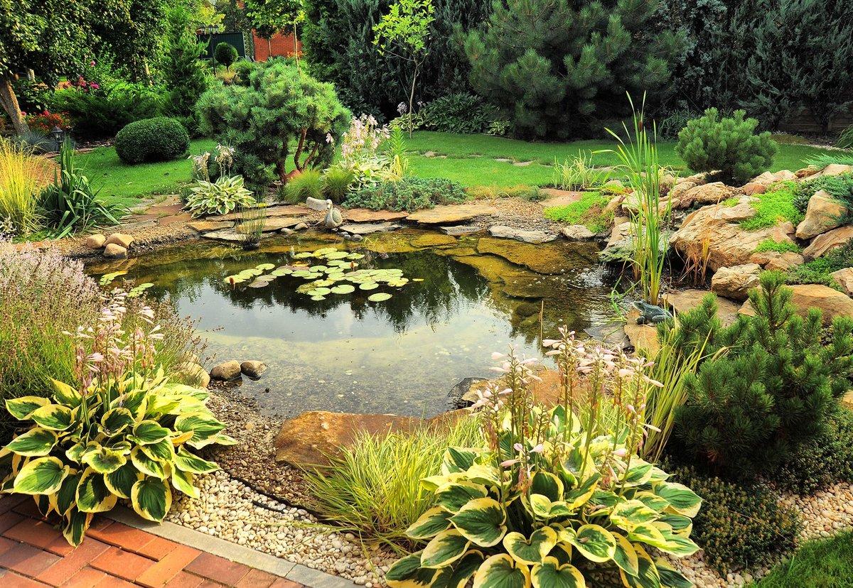 Ландшафтный дизайн пруды своими руками фото