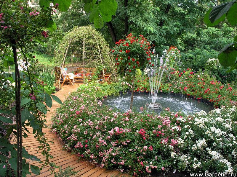 Мой прекрасный сад своими руками 43