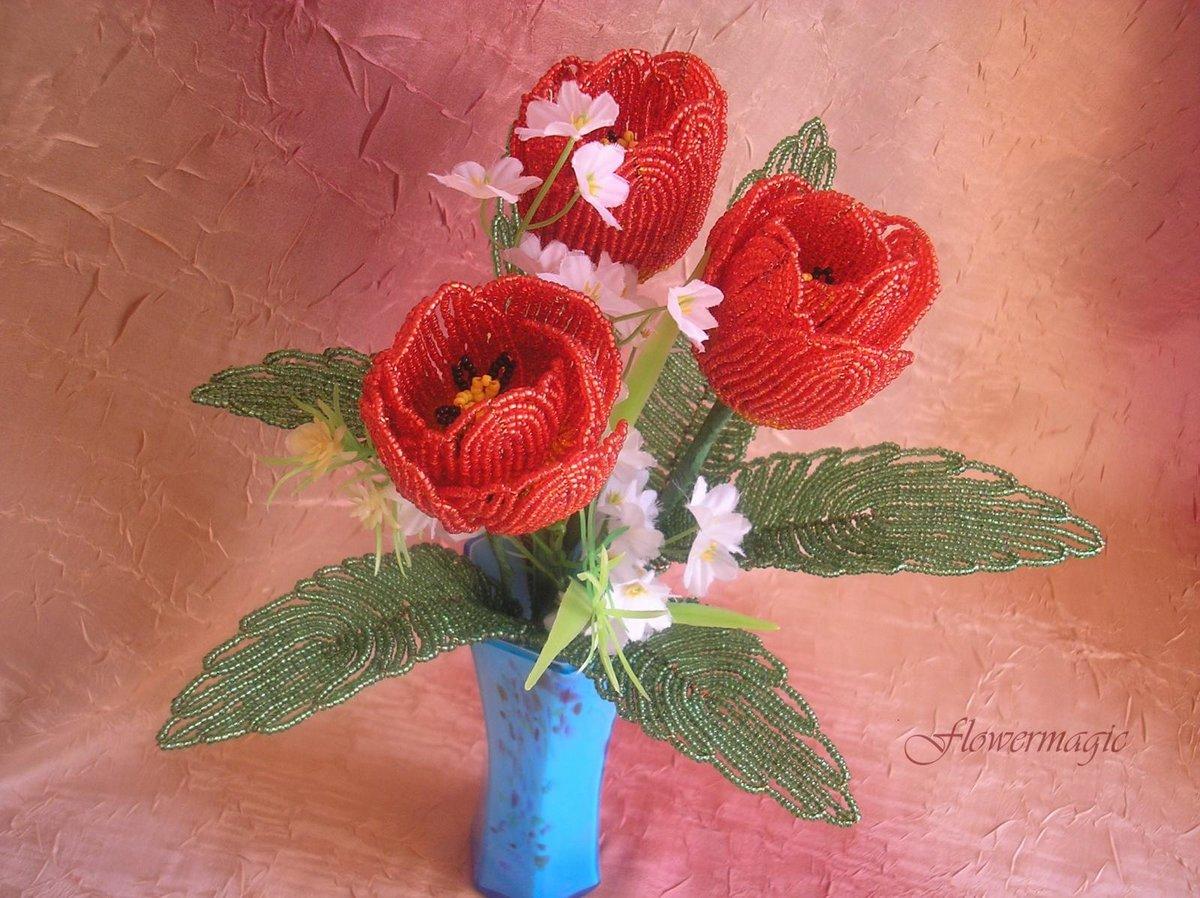 Размножение орхидеи пошагово с