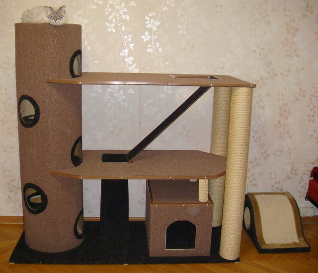 Как сделать комплекс для кошки своими руками в домашних условиях 9