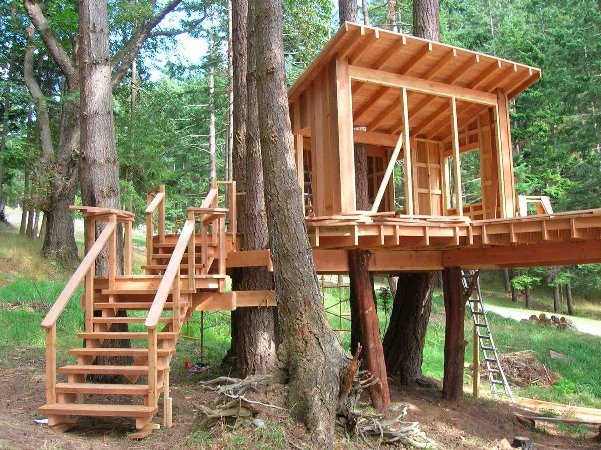 Фото домик на дереве своими руками