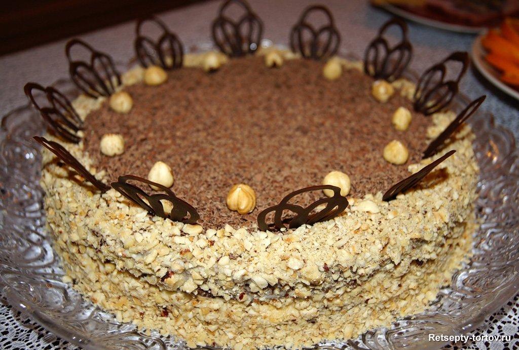 Торт кутузов пошаговый рецепт с
