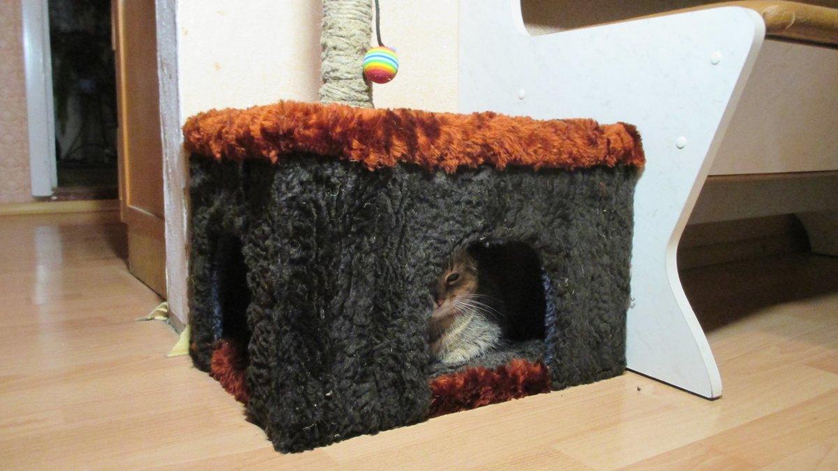 Как сделать дом для кошек своими руками фото