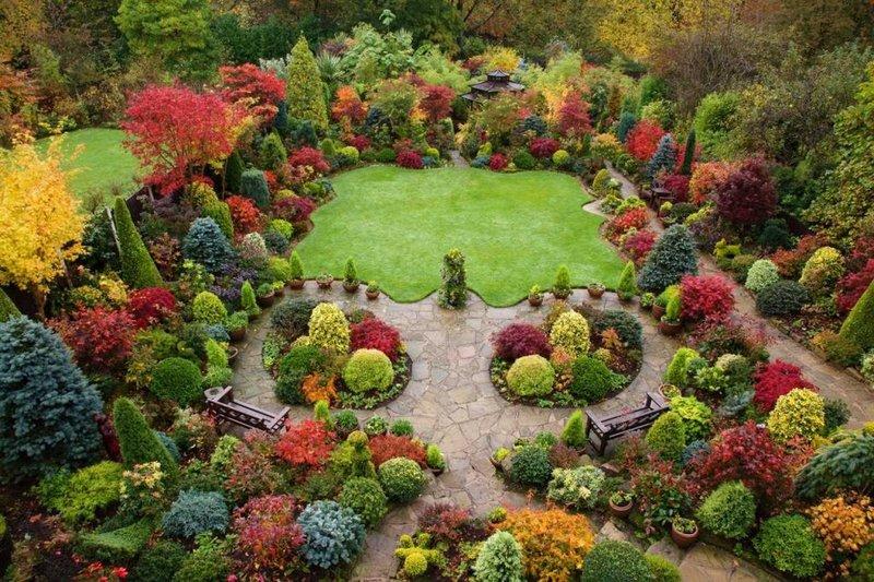 Самые красивые растения для ландшафтного дизайна