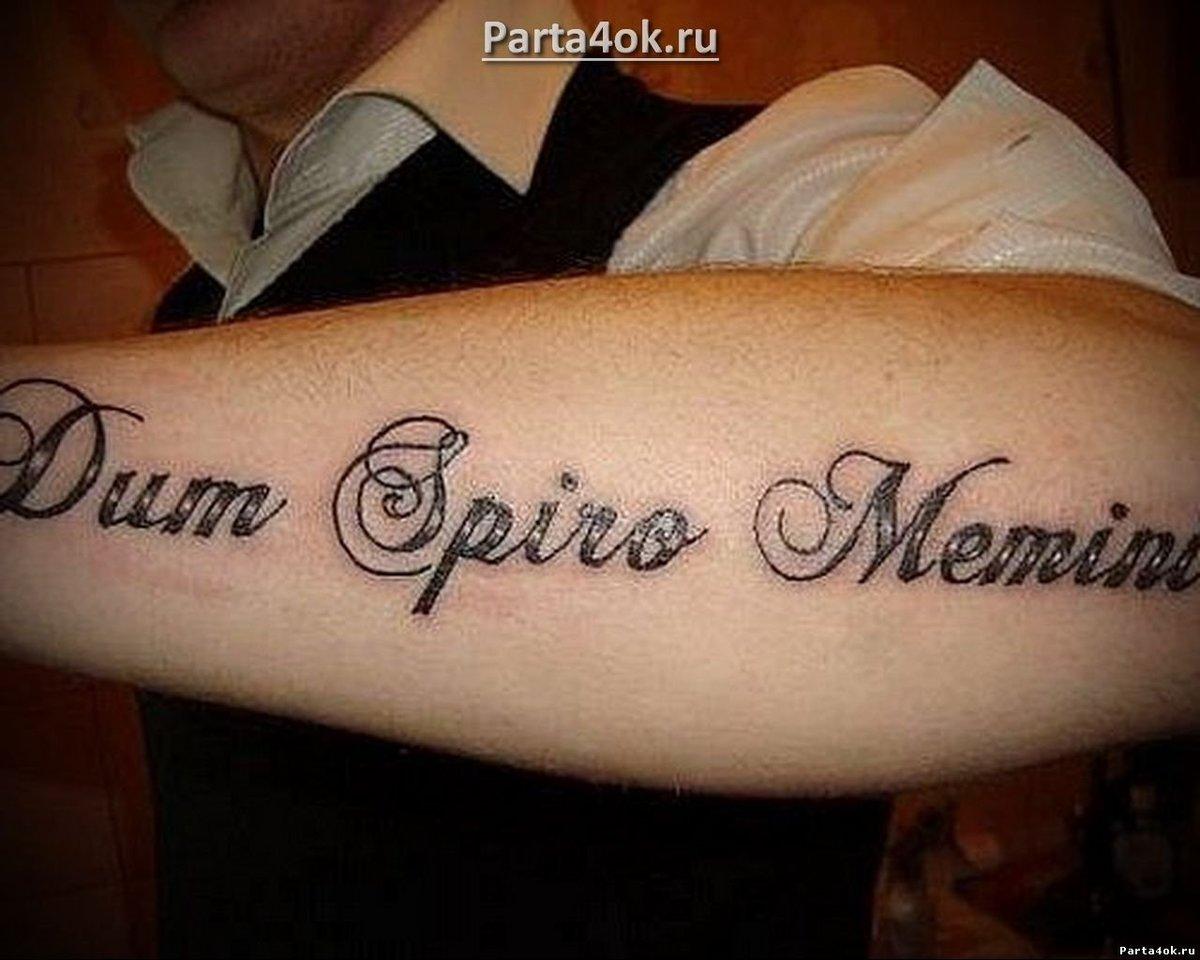 Лучшие надписи для тату с переводом для мужчин