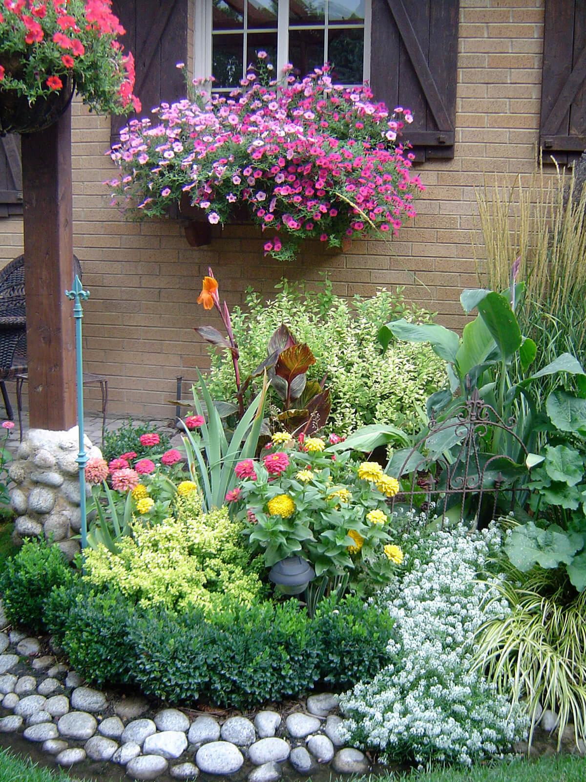 Во что посадить цветы во дворе фото
