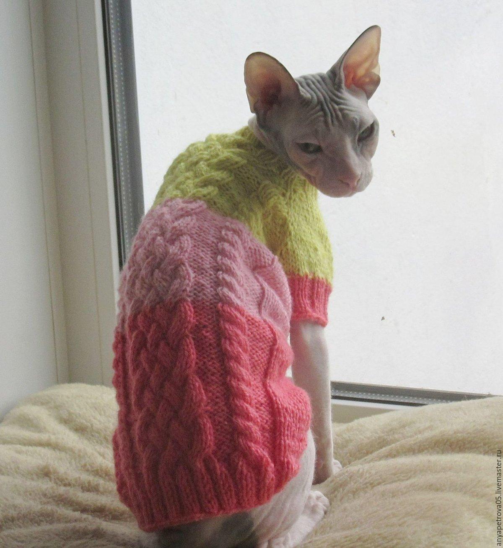 Свитер для кота вязание 535