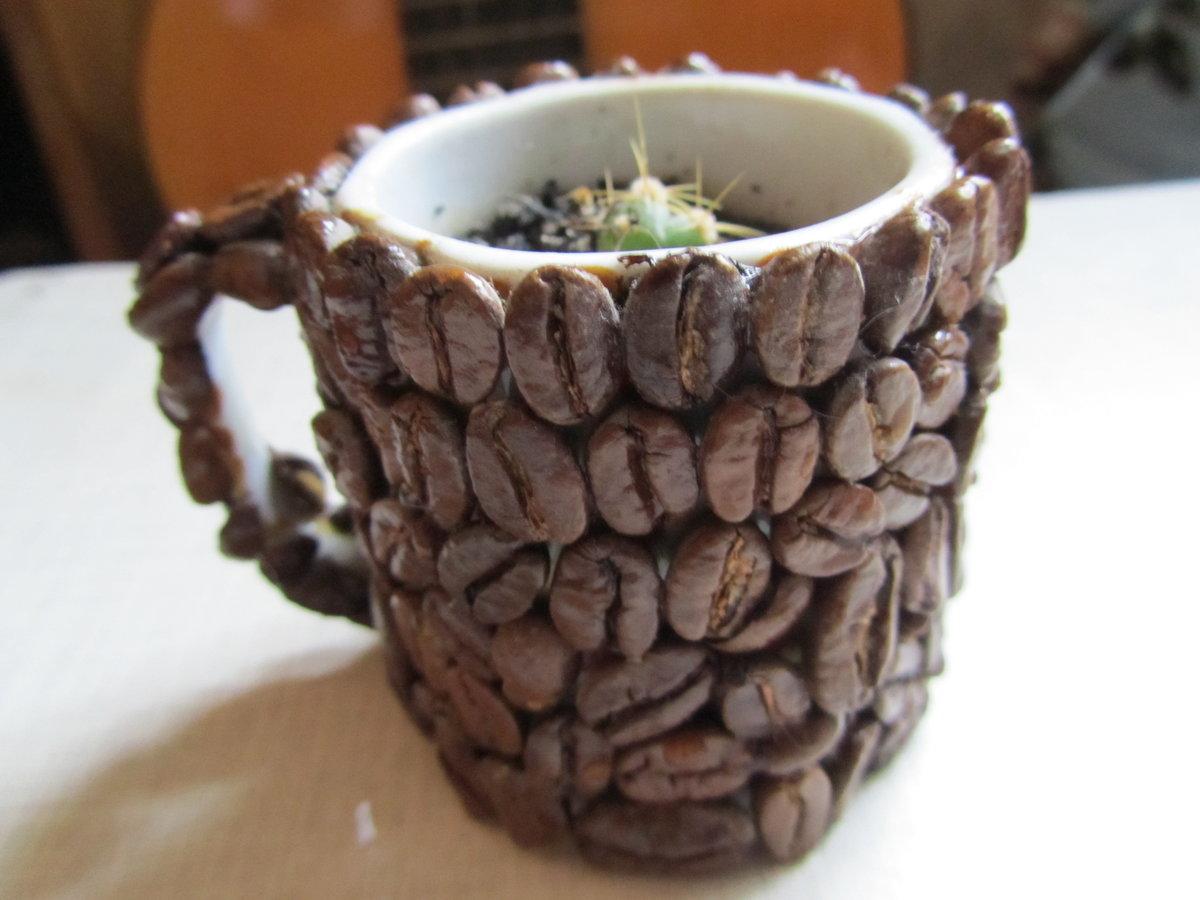Поделки из кофейных зерен своими руками чашка