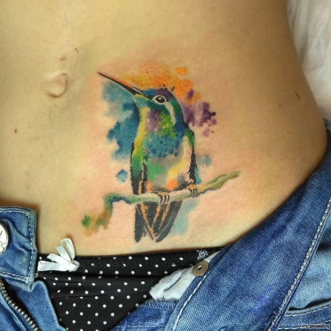 Татуировка колибри значение фото