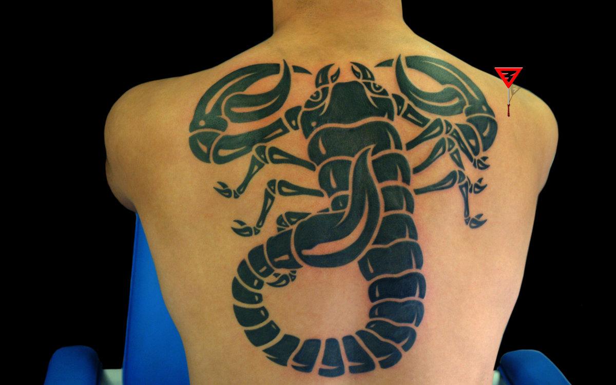 Тату Скорпион 39 фото и эскизов татуировки Рисунки