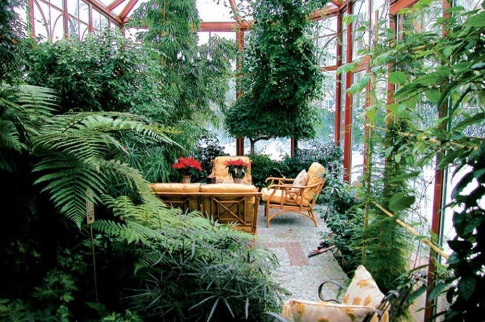 Зимний сад своими руками на участке 56