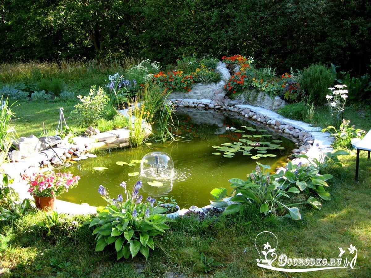 Делаем в саду прудик фото