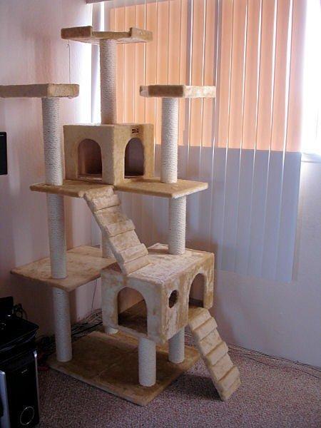 Игровой комплекс для кошек своими руками фото 73