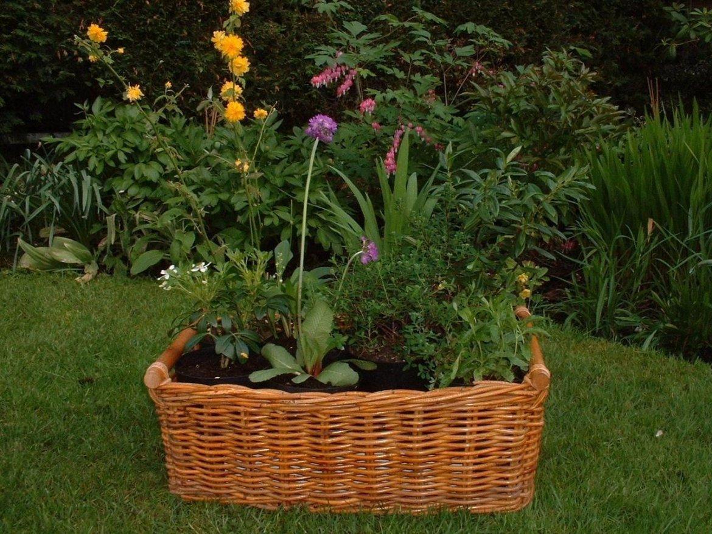 Корзинка для сада