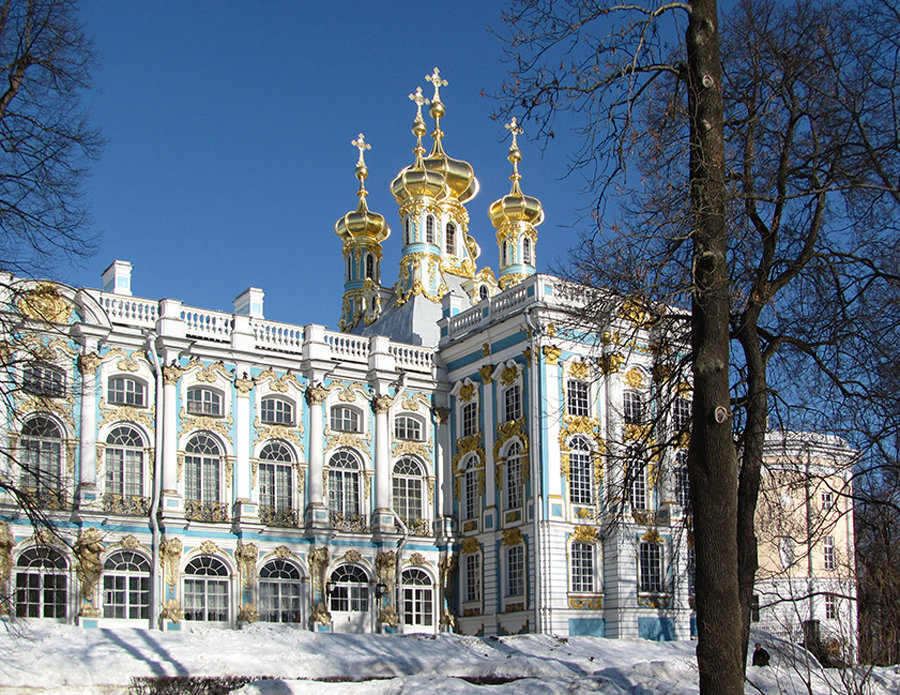 Пушкин город  Википедия
