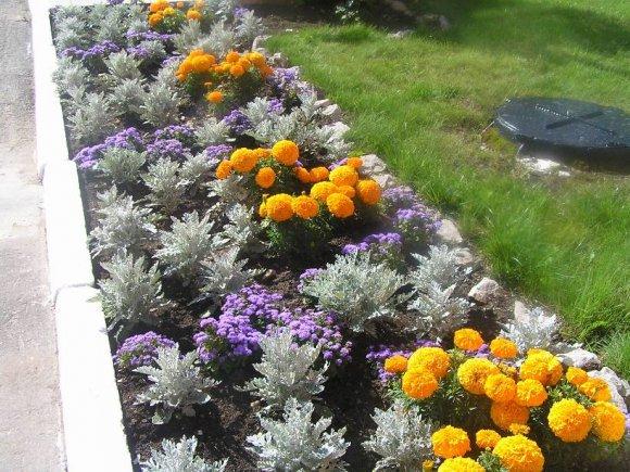 Рабатки клумбы и цветники на даче своими руками фото 216
