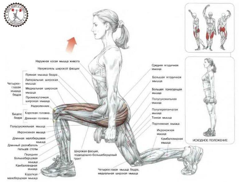 Похудеть мышцы в домашних условиях 38