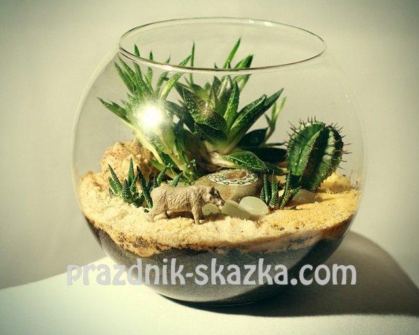 Выездной мастер класс по созданию флорариума своими руками, цветочный мир, заказать флорариум на дом, Москва и МО. http://prazdn