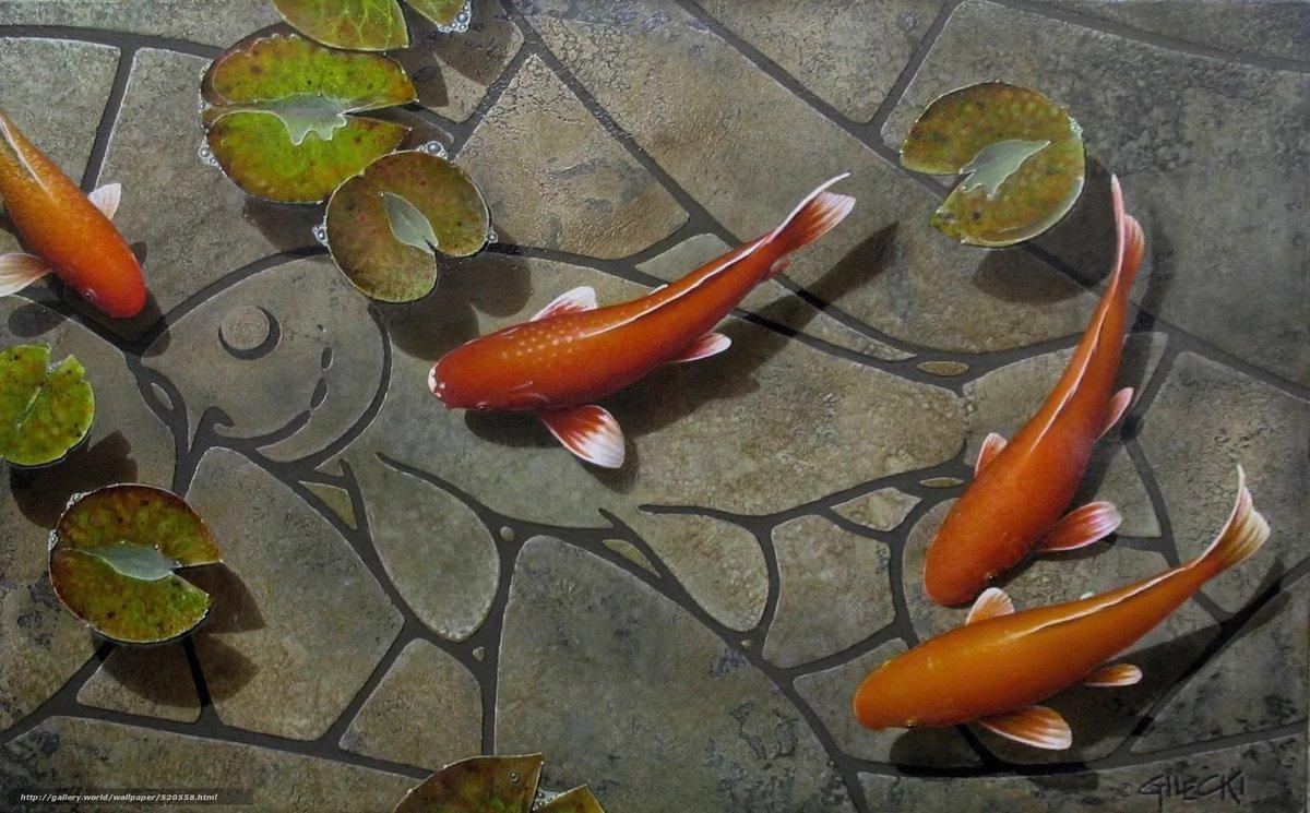 Золотые рыбки на поверхности  № 2075866 без смс