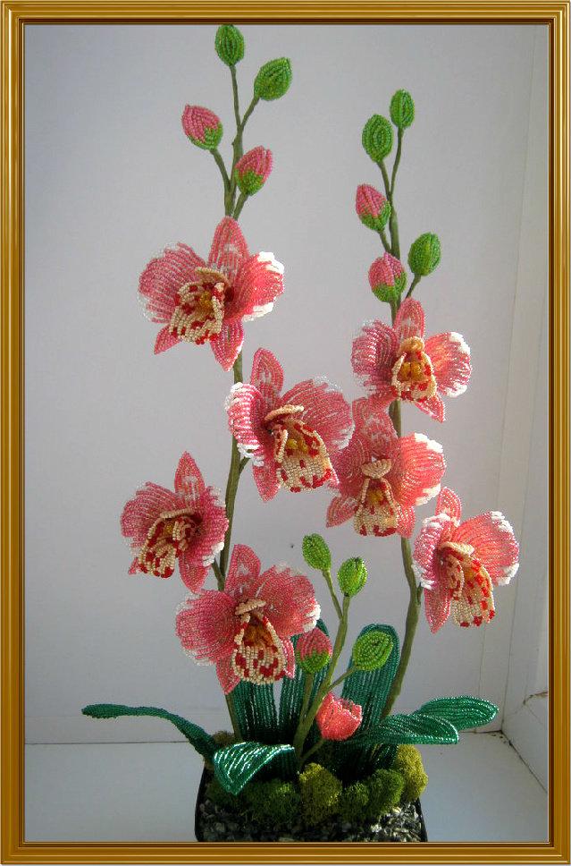 Фото цветы из бисера орхидея