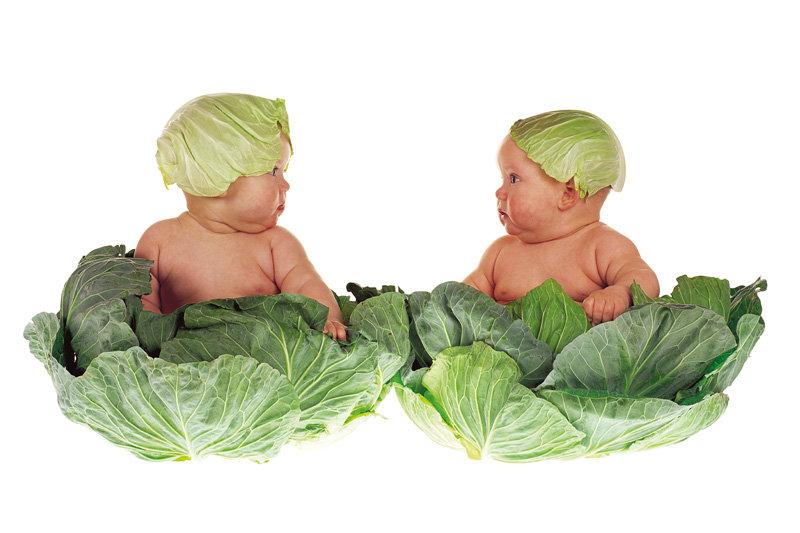 Прикольные поздравления для близнецов
