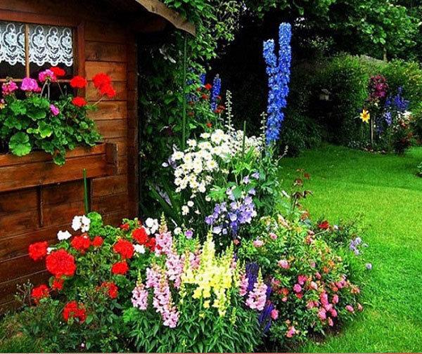 Как красиво посадить цветы перед домом 200