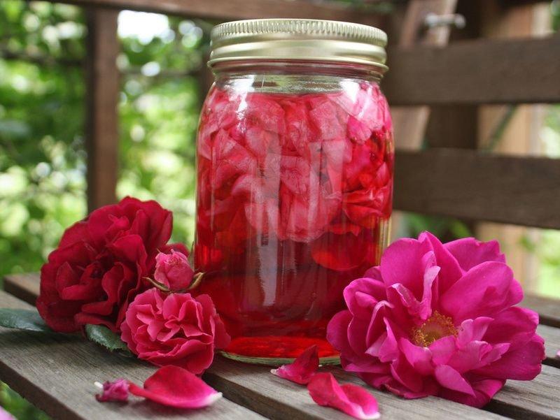 Наливка из лепестков розы в домашних условиях 127