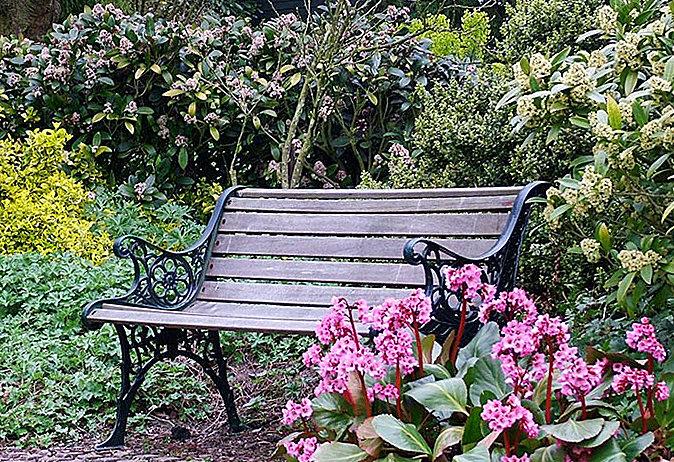 Скамья в саду