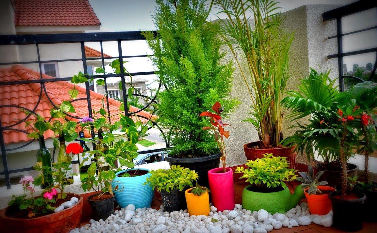 Как украсить балкон цветами внутри фото