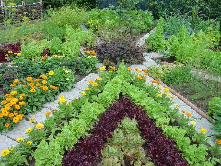 Своими руками для цветника огорода 87