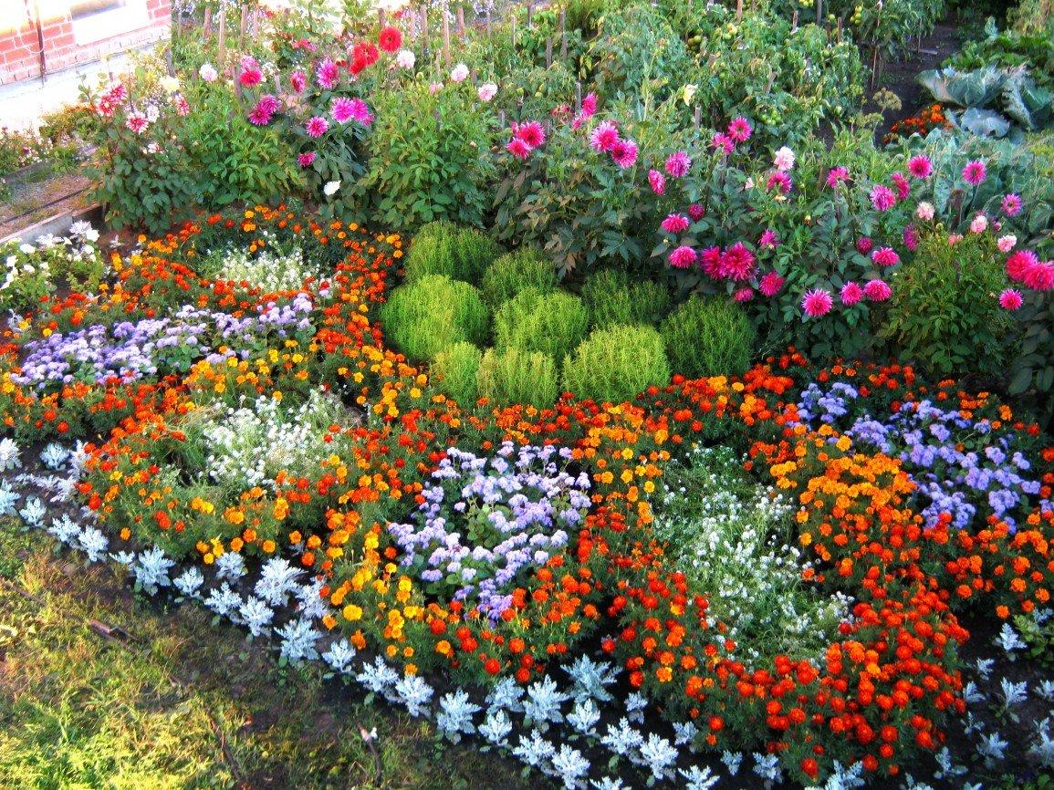 Идеи оформления цветников на даче фото