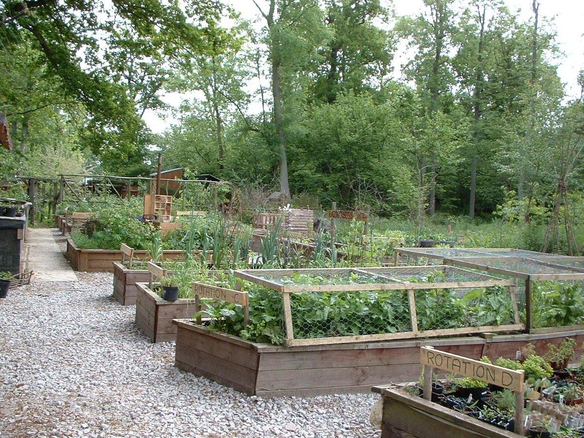 Сад и огород в сибири своими руками