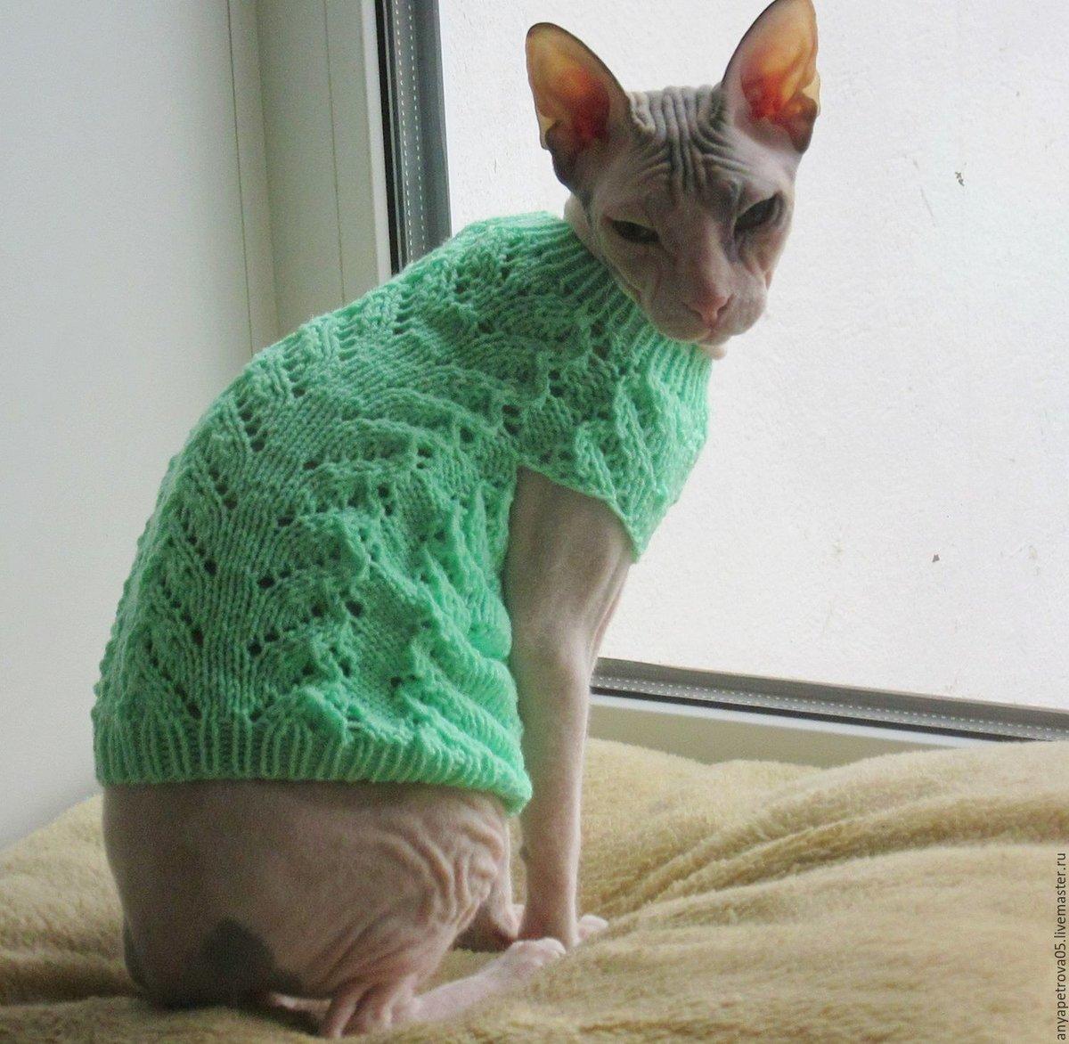Лежанка для кота своими руками: старый свитер, поролон или 87