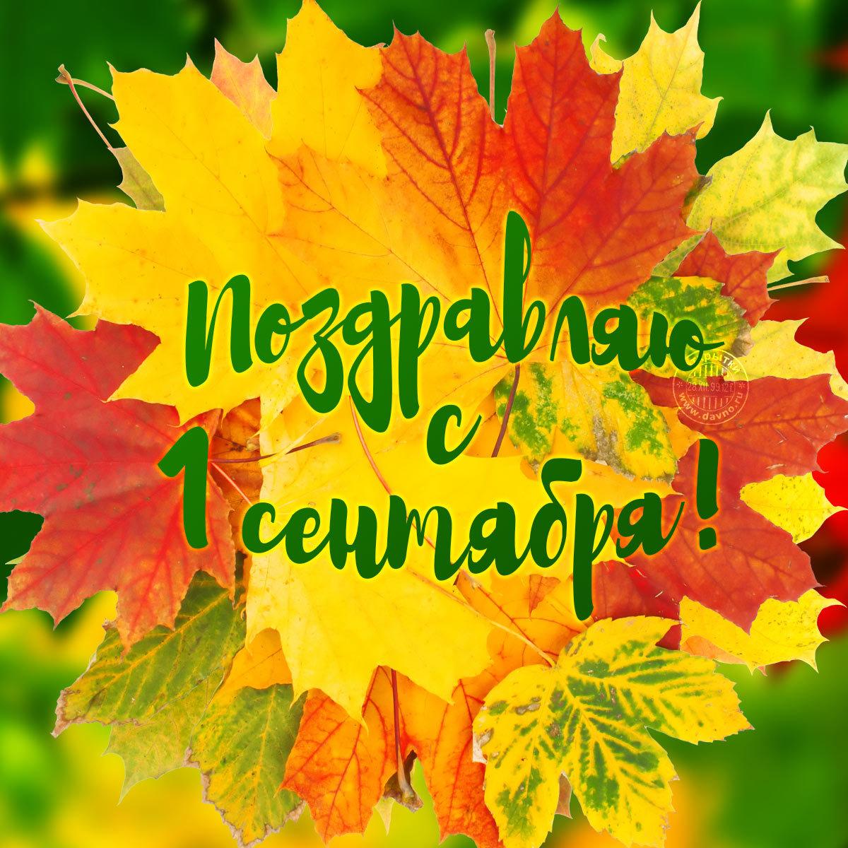 1 сентября поздравление студентов