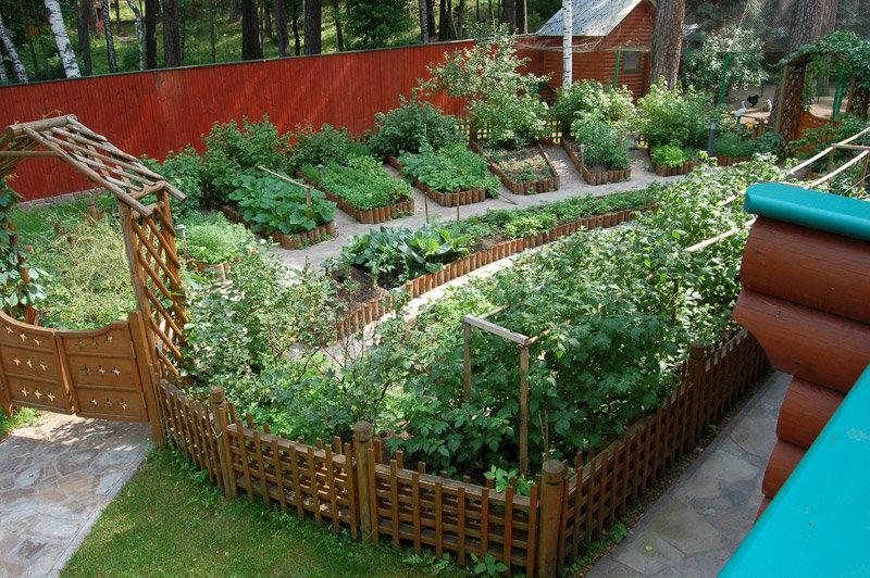 Посадить сад своими руками 100