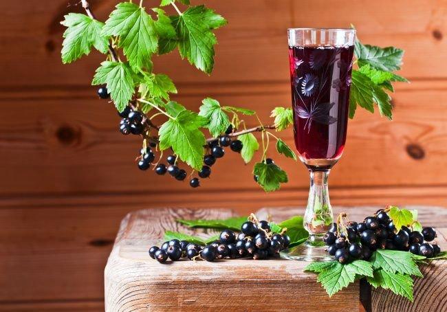Рецепт сухого вина из красной смородины в домашних условиях 604