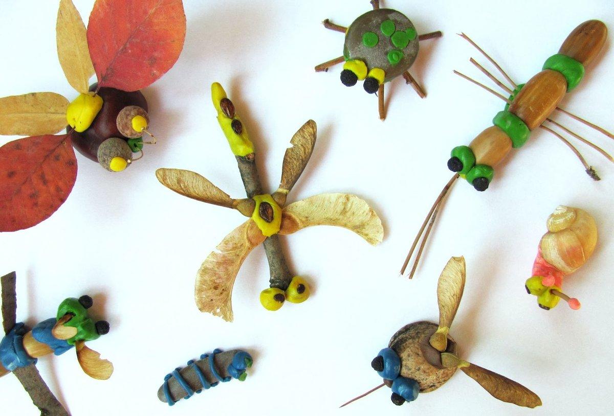 Поделки из природного материала своими руками для детей в детский