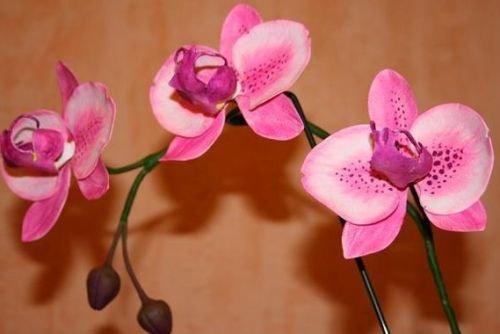 Как сделать орхидеи из а 861